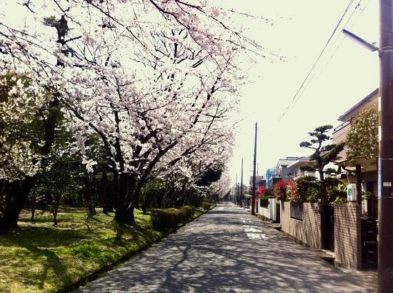 ご近所.jpg